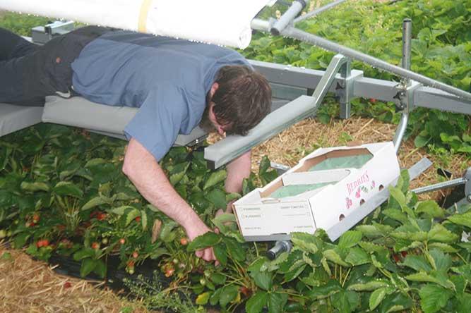 5 Ways CropCare Improves Ag